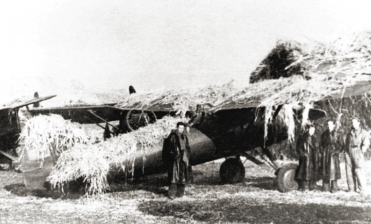 File:Polish P-11 camouflaged in airfield 1939.jpg