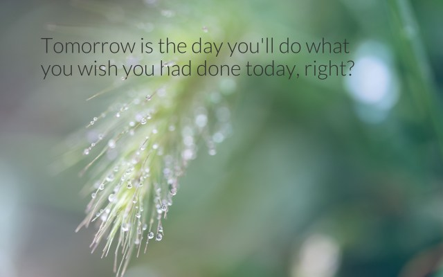 Preachy saying about procrastination: Tomorrow is the day you'll do what you wish you had done today, right?