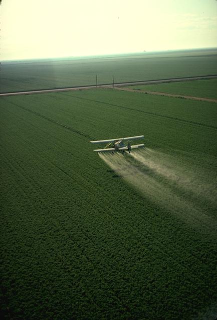 English: Spraying pesticide in California