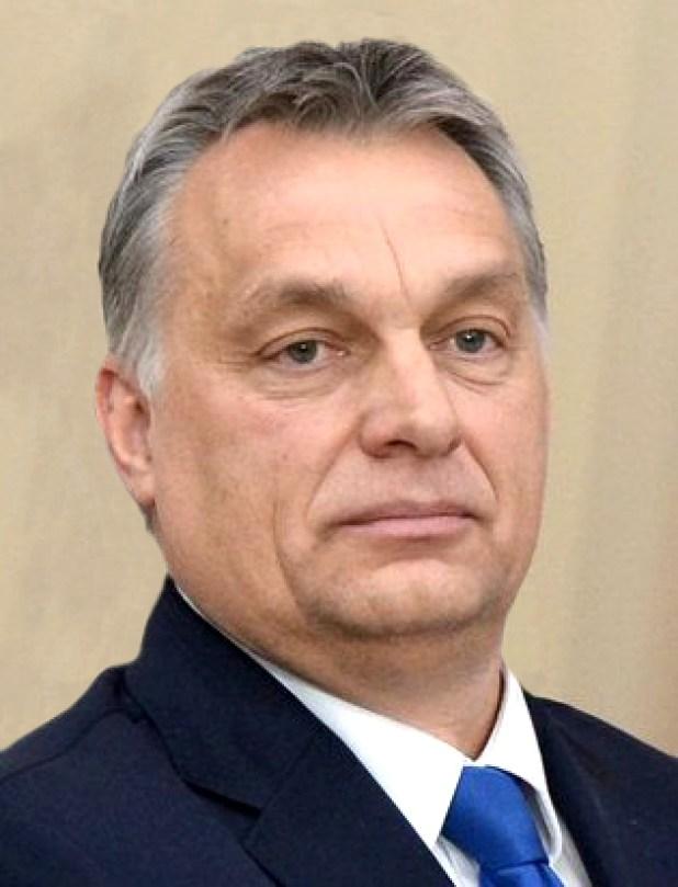 Viktor Orban Vlad's History Blog Interview Nationalism