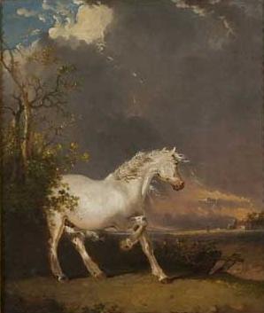 Cheval blanc sur une peinture de James Ward (1769-1869).