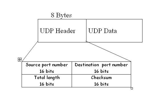 Communication Networks/TCP and UDP Protocols/UDP ...
