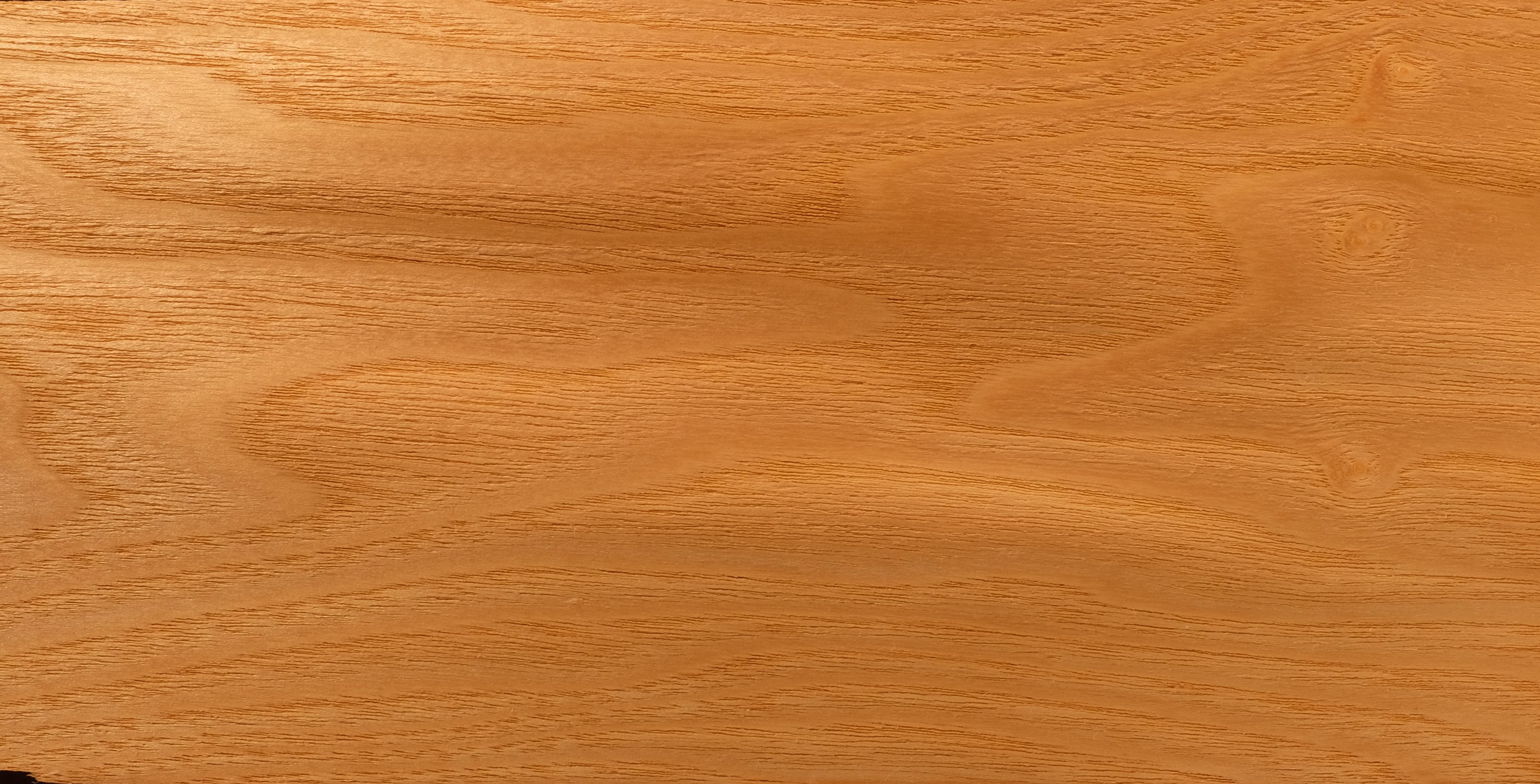 Esche gemeine Holz.JPG