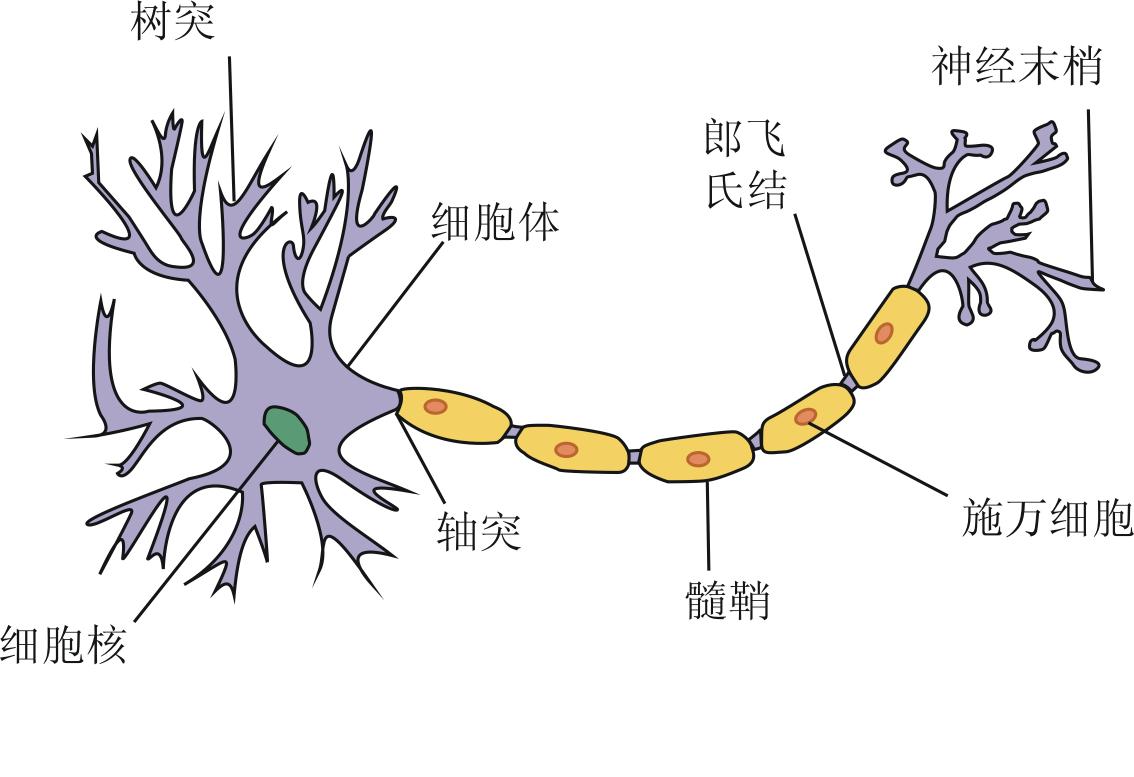File Neuron