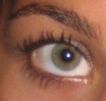 A female eyebrow