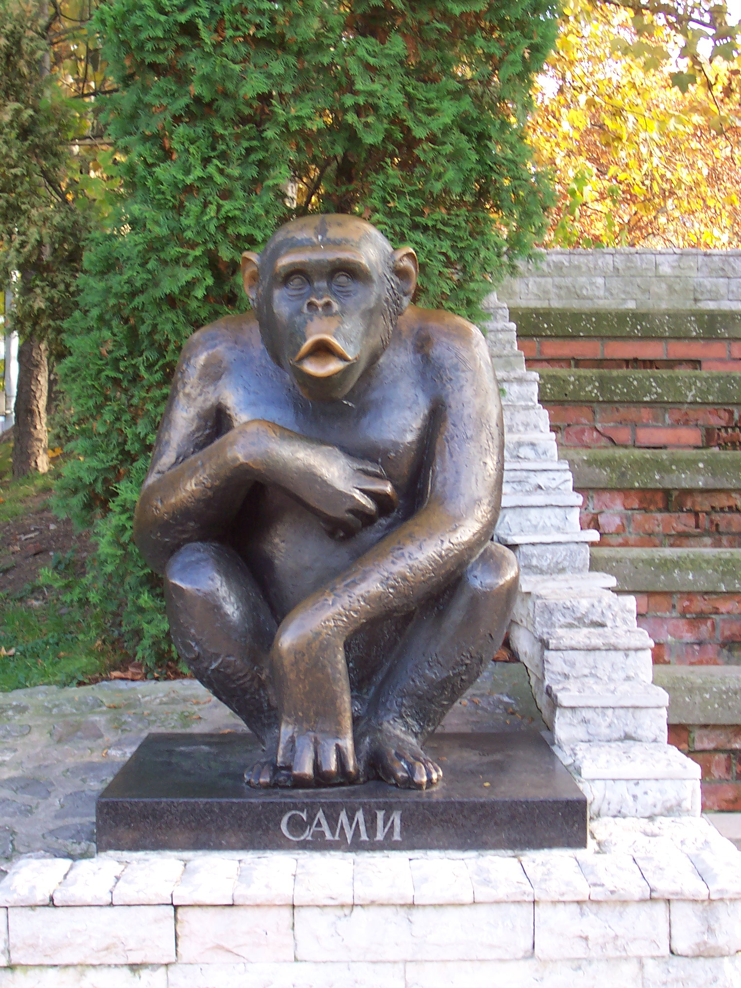 The Zoos homage to Sami, the good-natured chimp who escaped several times during the late 80s and soon became Belgrades adored mascot