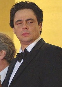 Del Toro at Cannes 2008