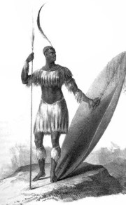 Shaka Zulu; King of the Zulu's