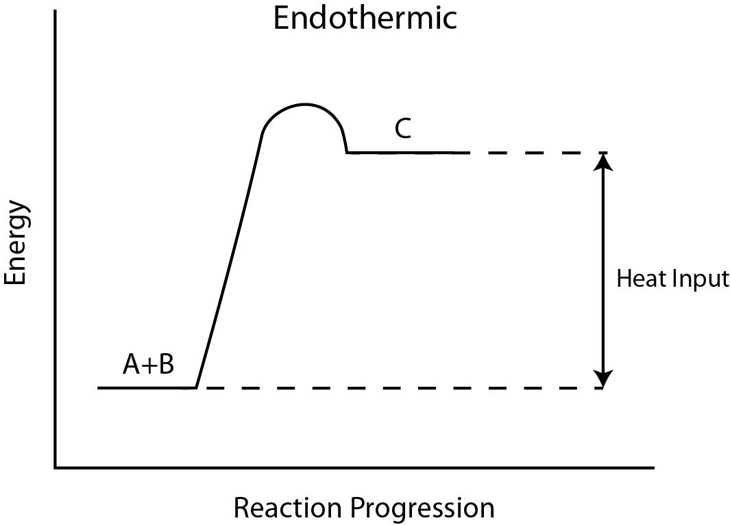 Contoh Reaksi Endoterm