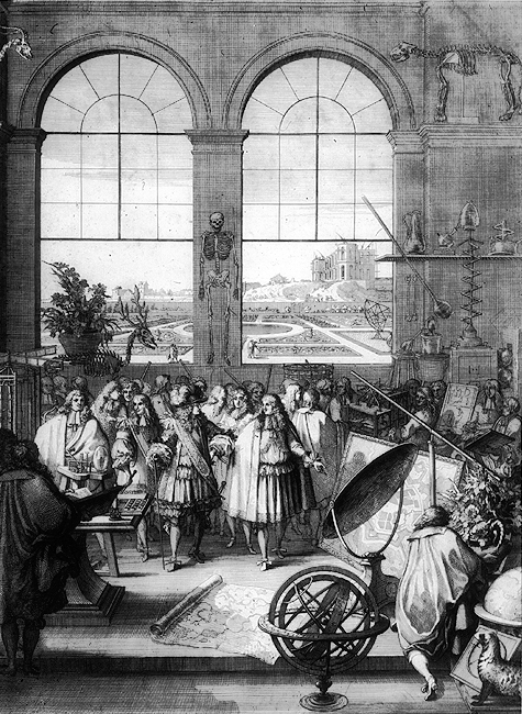 The visit of Louis XIV to the French Academy in 1671.