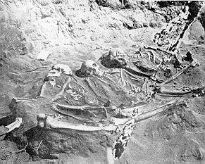 I Have Skeletons To Unearth. By American Museum of Natural History (http://adsny.com/nyindian/nyindianintro.html) [Public domain], via Wikimedia Commons.