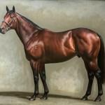 Fastnet Rock Horse Wikipedia