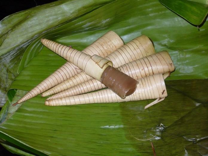 Image result for makanan yang dibungkus daun Kelapa