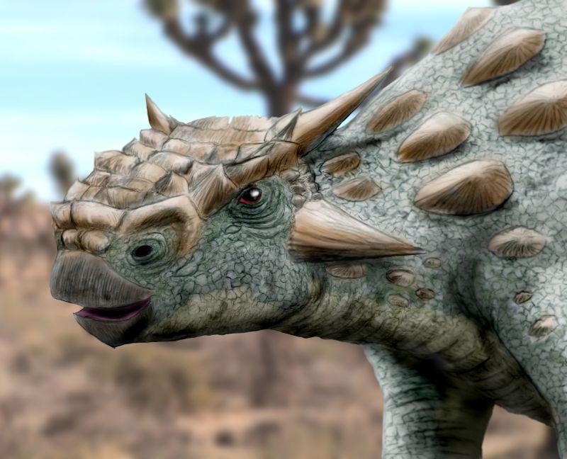 Minotaurasaurus ramachandrani