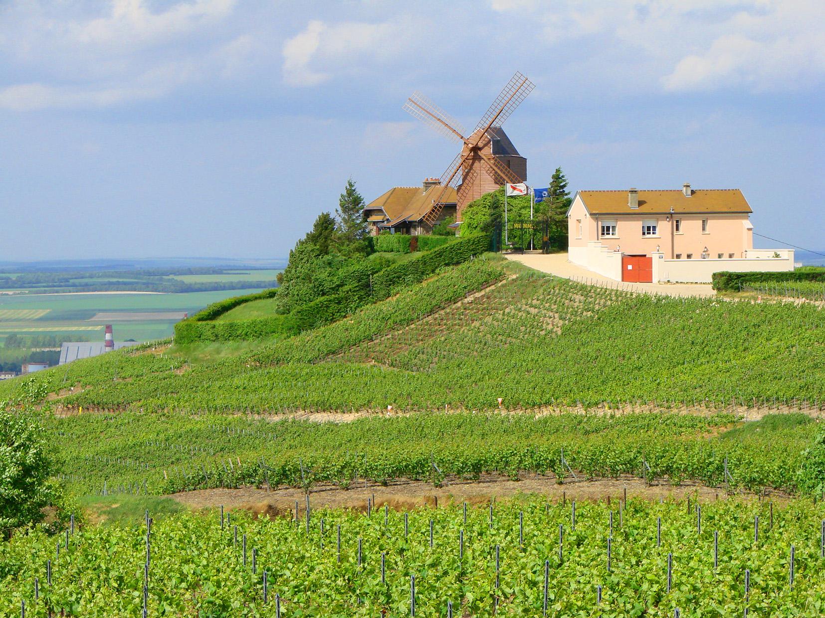 Le moulin de Verzenay, Montagne de Reims, le v...