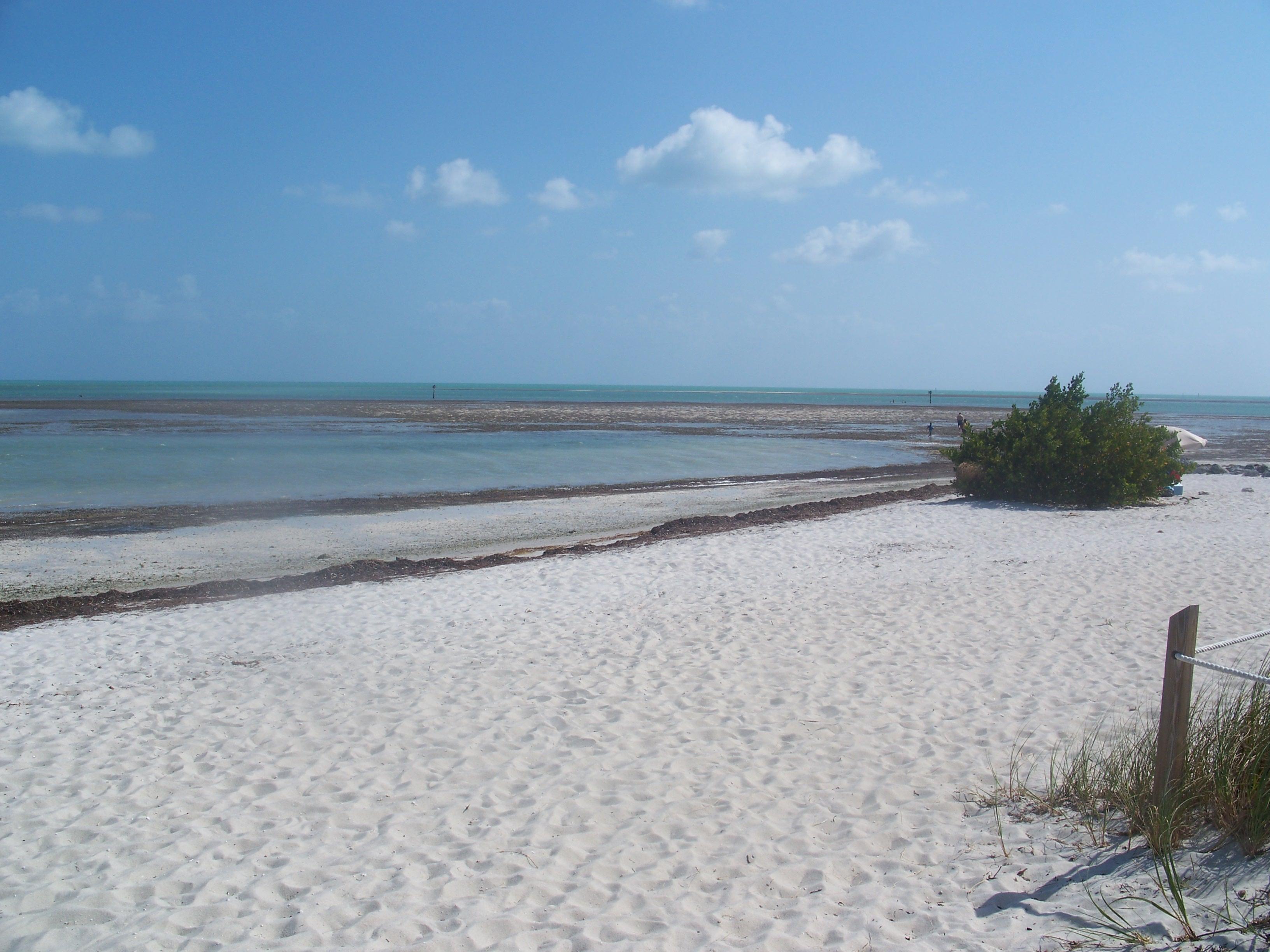 File Marathon Fl Curry Hammock Sp Beach04