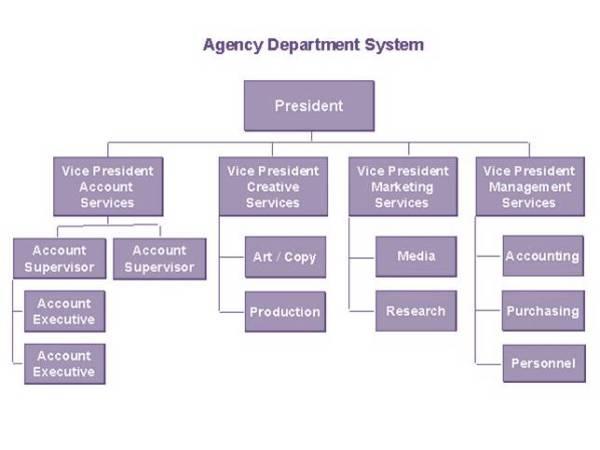 Organizational chart - Wikipedia