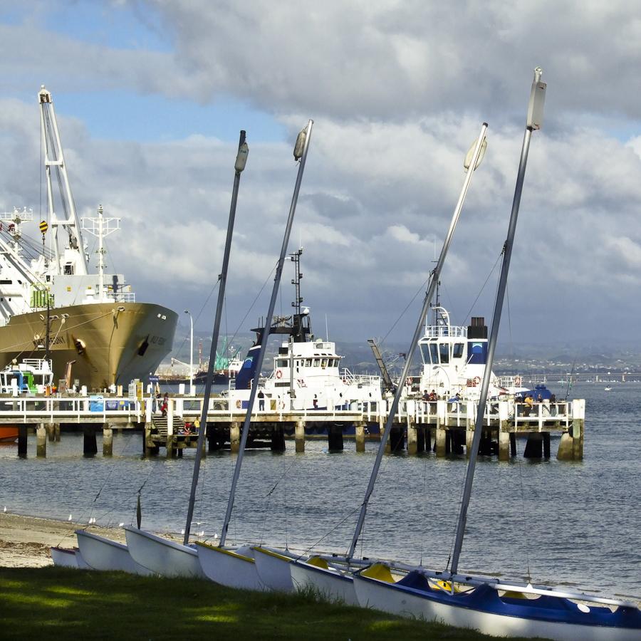 Tauranga New Zealand Cruise Port