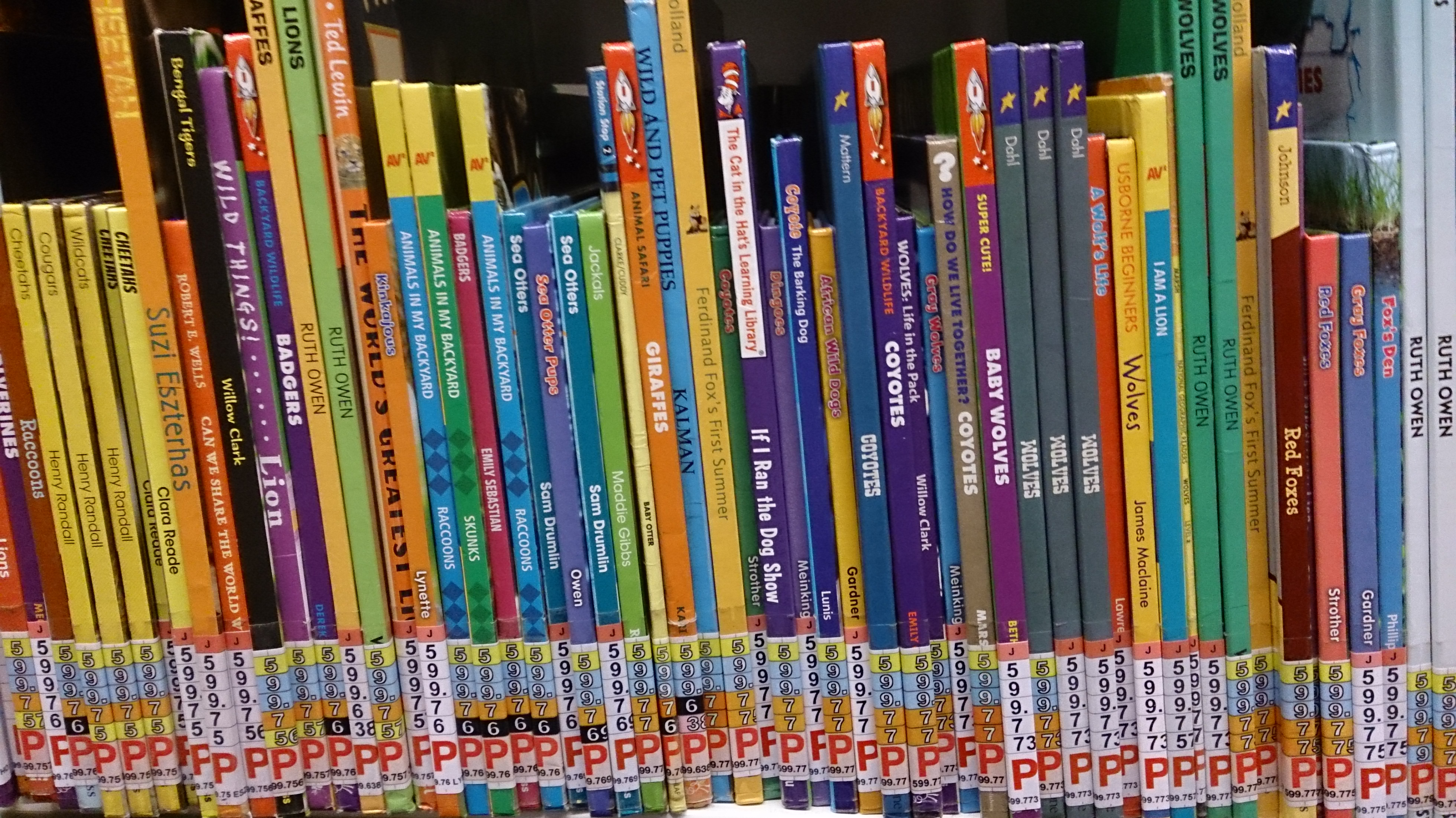 File Children S Books At A Library