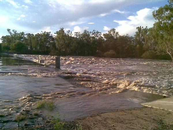 Dawson River Queensland Wikipedia