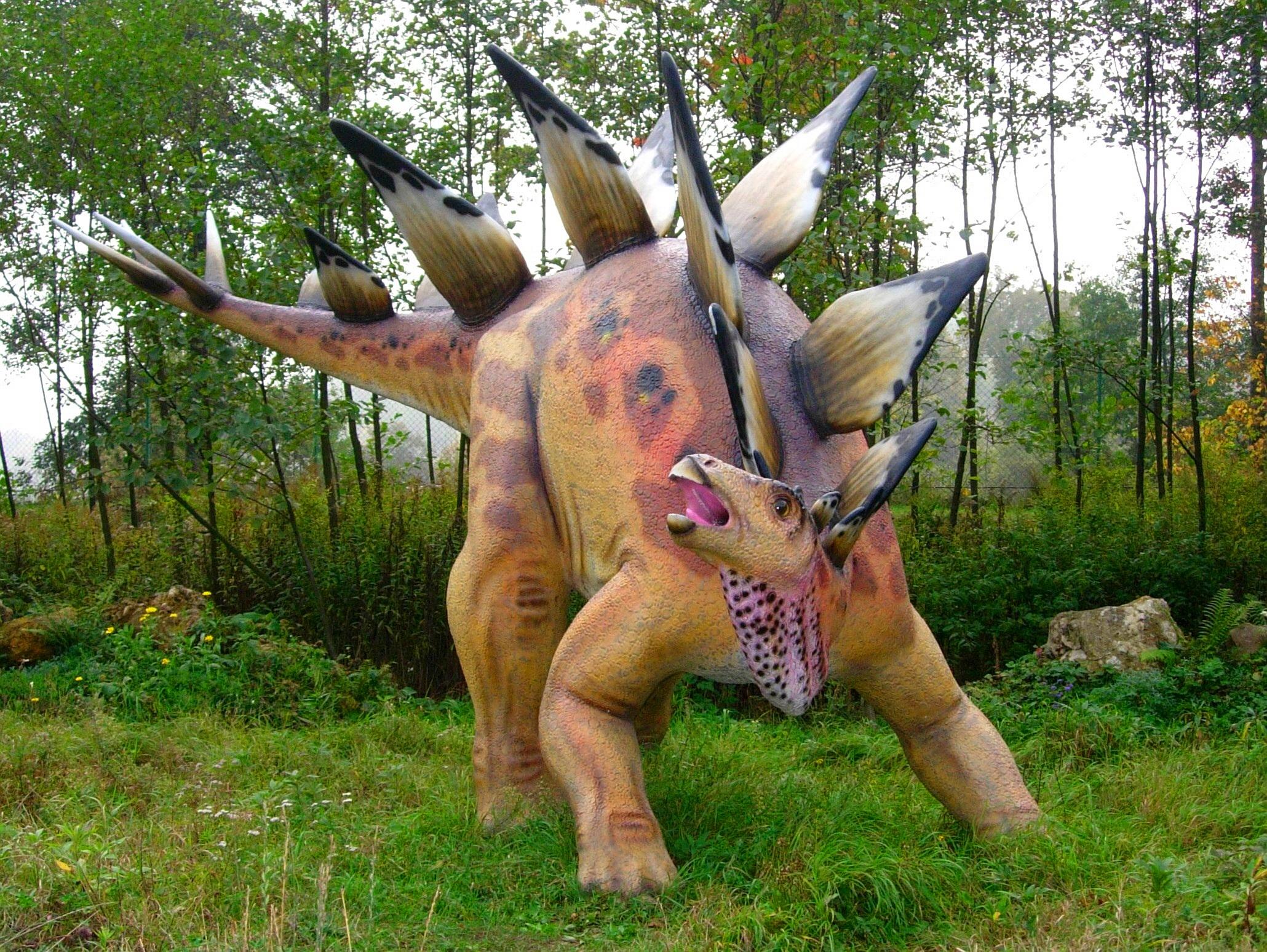stegasaurus, stomping gender norms