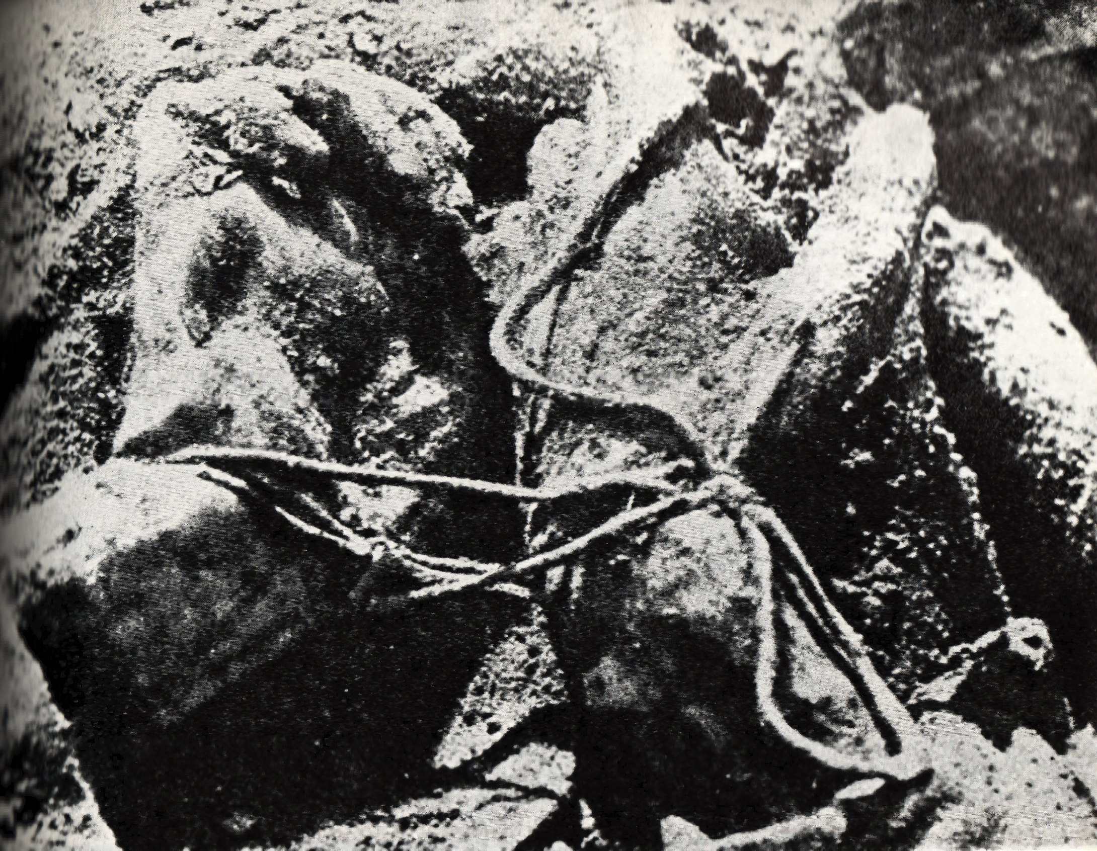 https://i1.wp.com/upload.wikimedia.org/wikipedia/commons/8/8c/Katyn_massacre.jpg