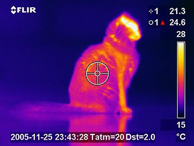 Podstatou termovízie je (infrečervené) tepelné žiarenie.