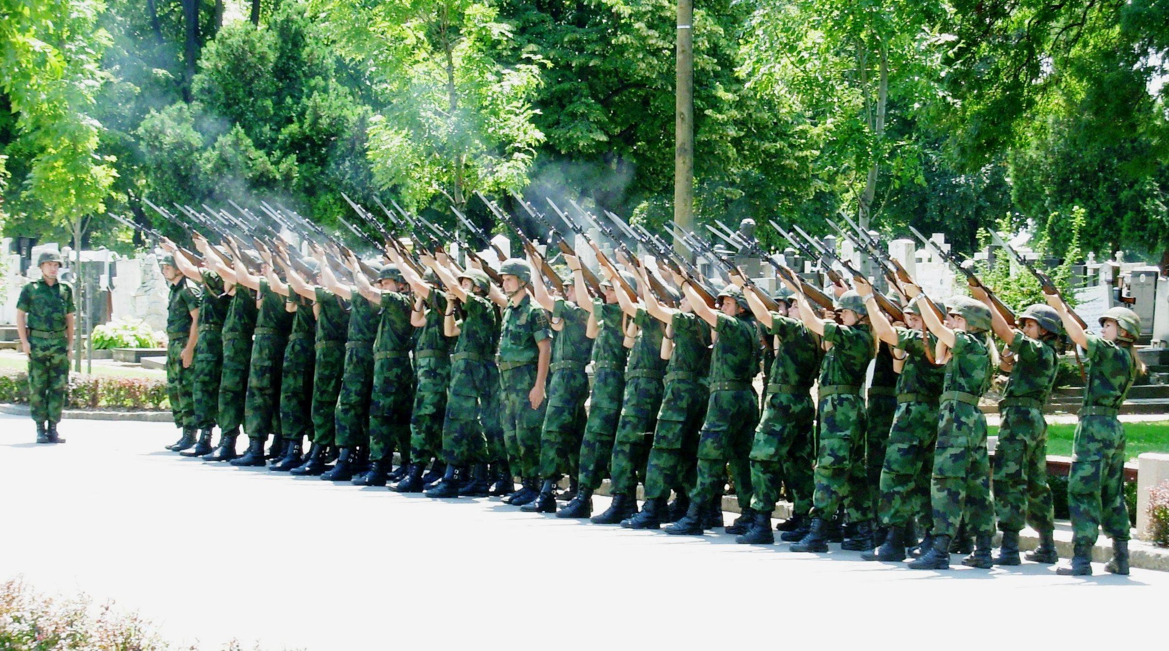 Image result for vojska srbije logo