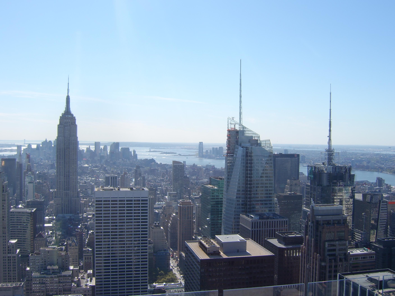 Yankee New Sandwich York