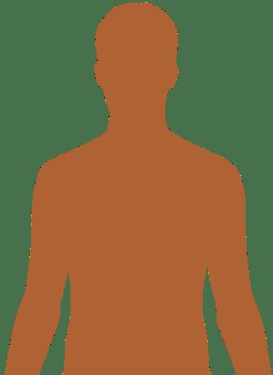 Human body diagrams  Wikimedia Commons