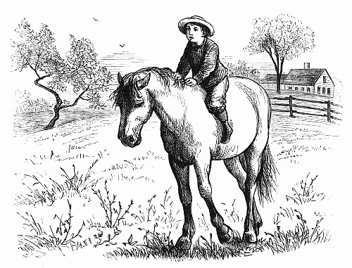 Boy on a Horse circa 1877 (unkown artist) Image from Wiki Commons