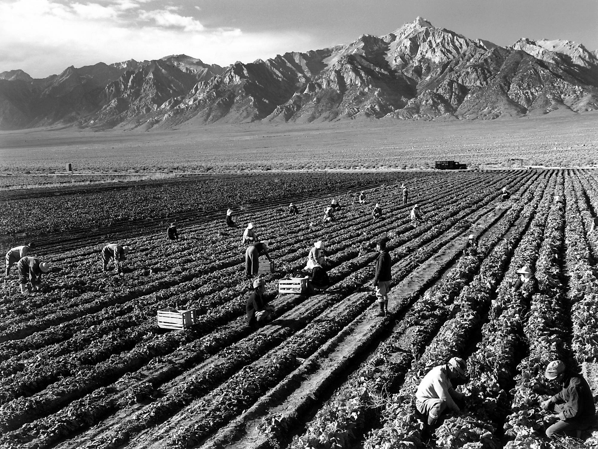 Ansel Adams: Una fotografía no es un accidente, es un ... Ansel Adams Clearing Winter Storm Wiki