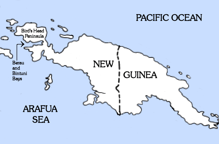 Information About Islands