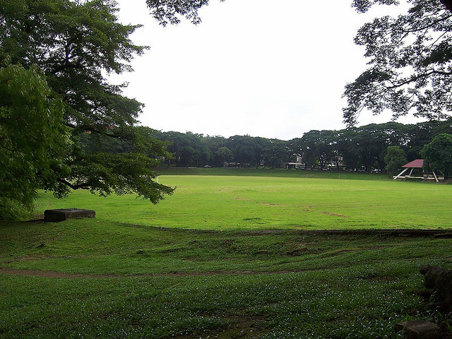Image of the UP Sunken Garden, view from one side of the University avenue
