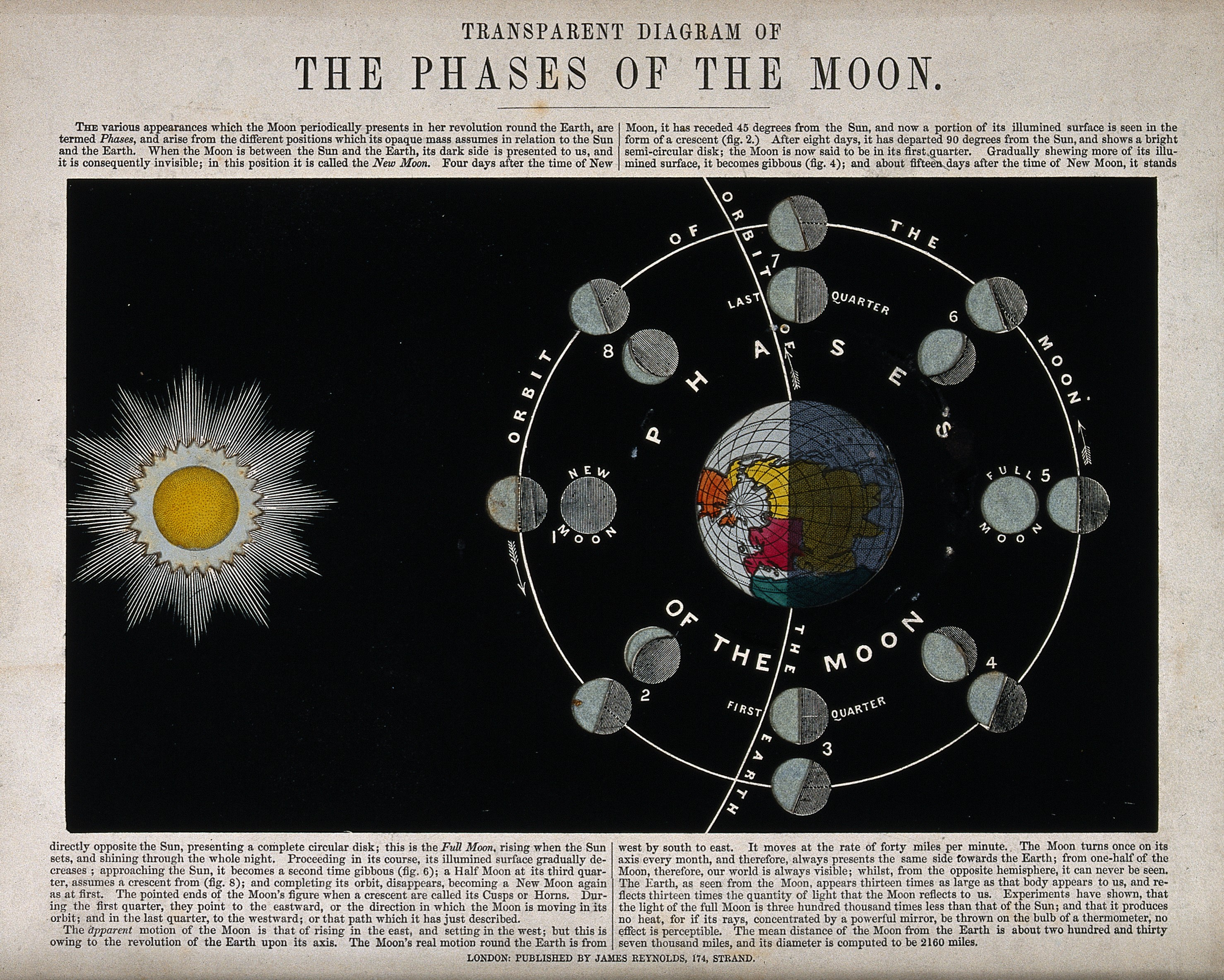 File Astronomy A Translucent Diagram Of The Phases Of The