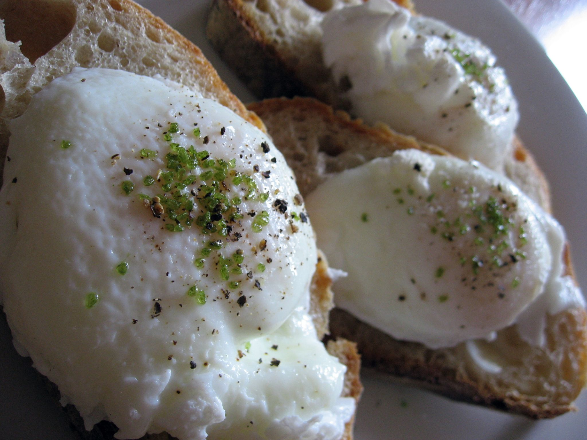 Poached Eggs over bread Wikipedia