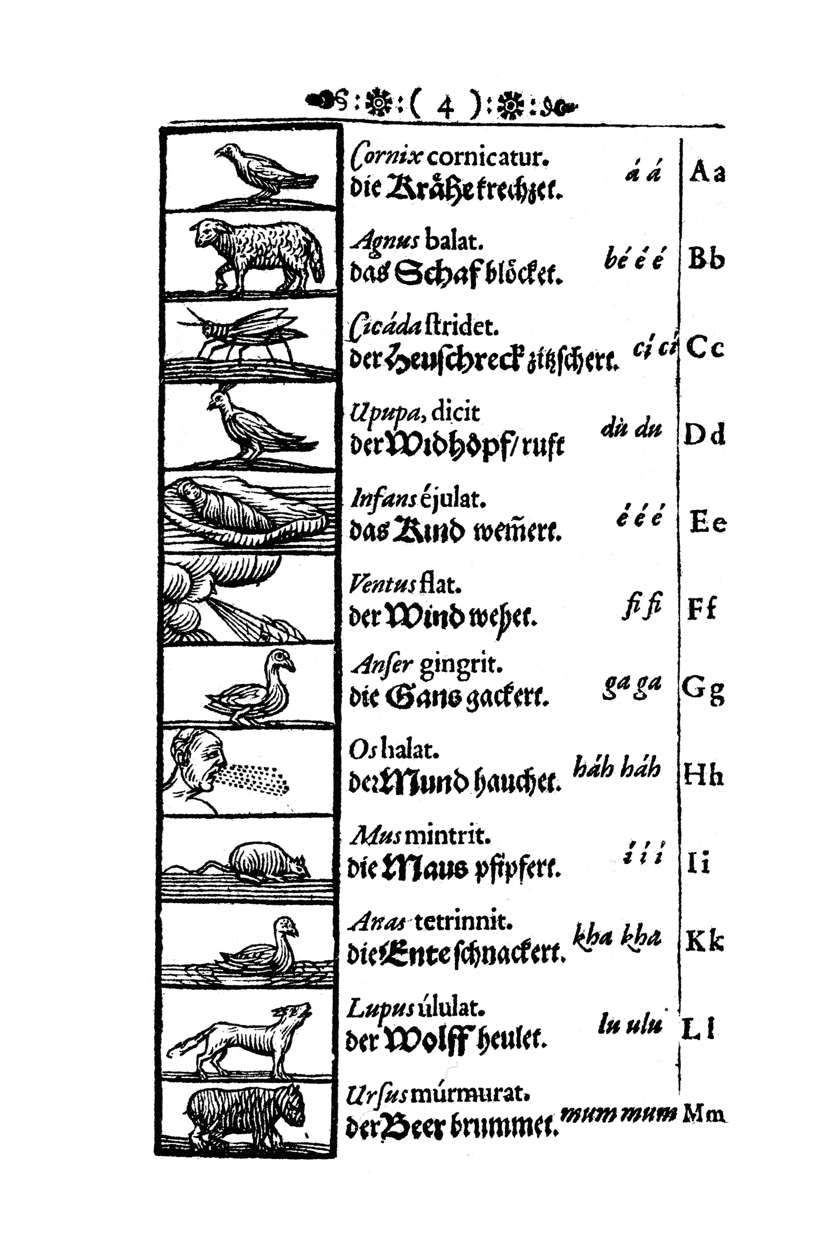 File Orbis Pictus 003