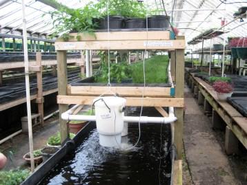 Aquaponik Anlage von Growing Power in Milwaukee.