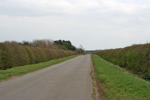 File:A Long Straight Road on Ropsley Heath - geograph.org ...