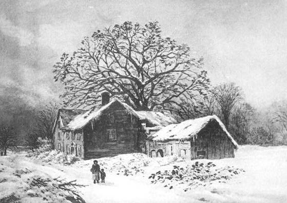 Avery Oak Wikipedia