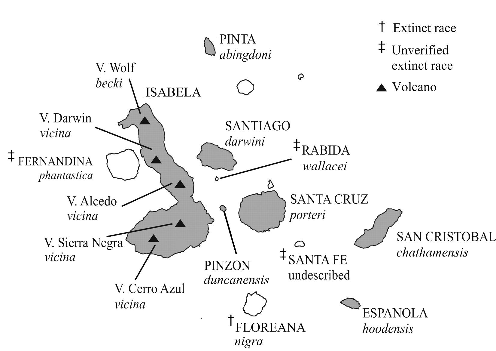 File Galapagos Tortoise Distribution Line Diagram