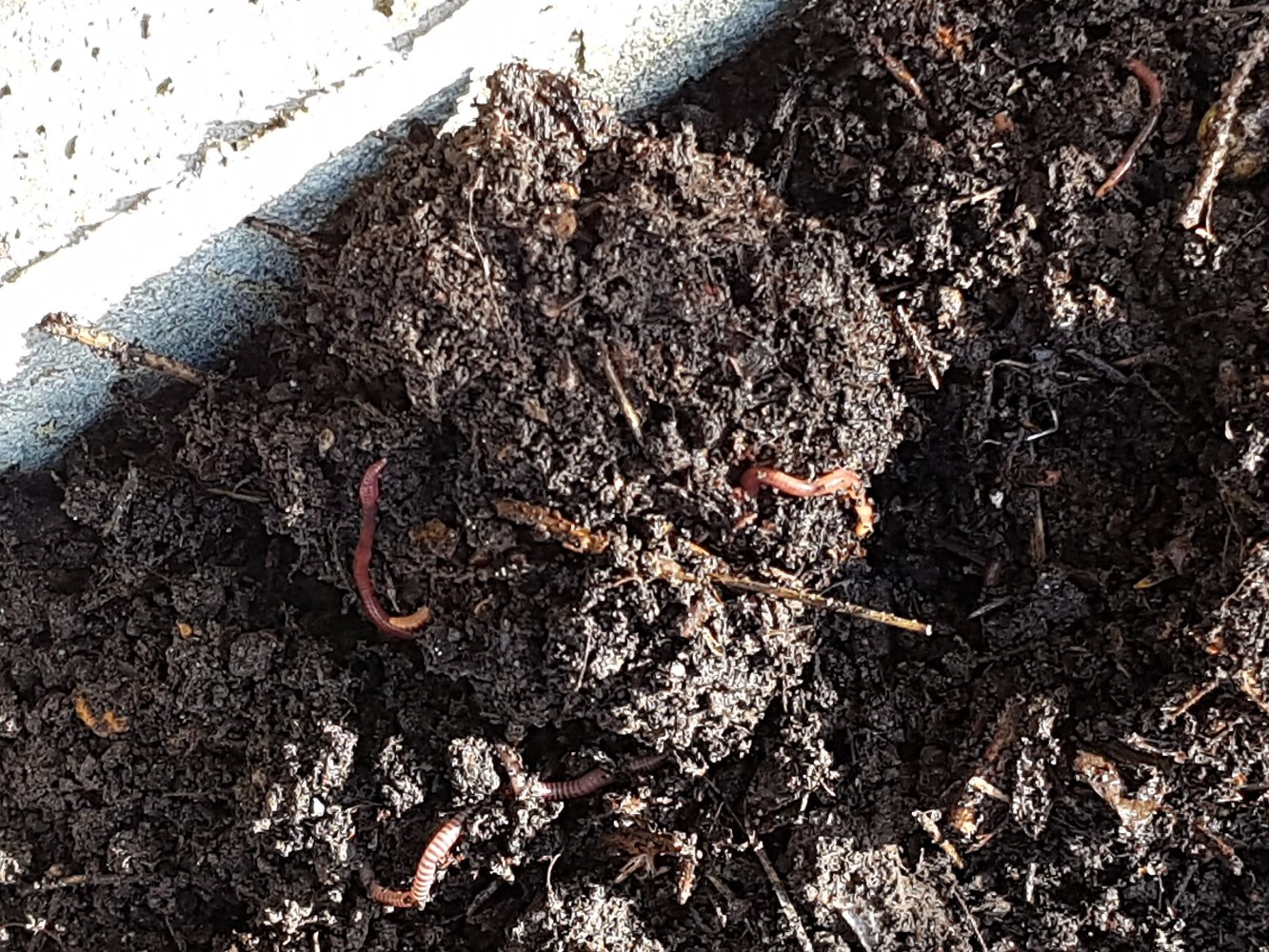 What Is Important To Know About Soil Layers