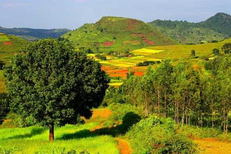 Image result for Araku Valley, Andhra Pradesh