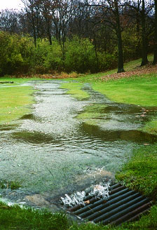 Runoff flowing into a stormwater drain