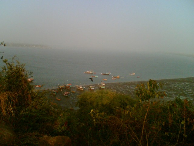 Fishing in Gorai Beach, Mumbai.jpg