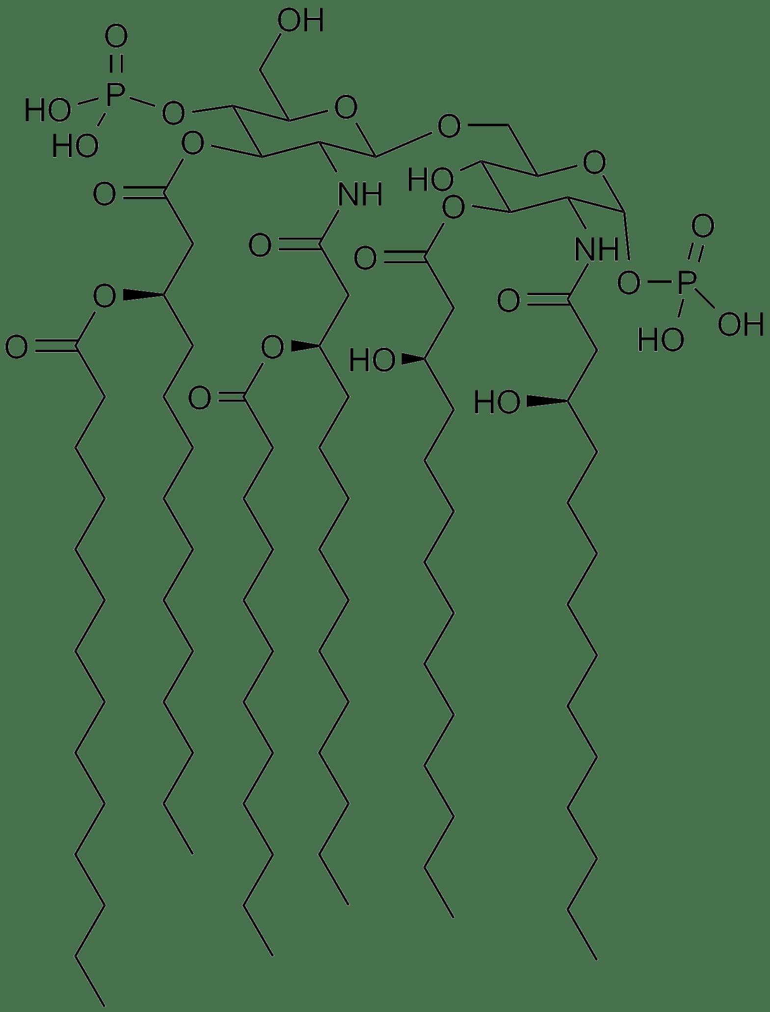 Lipid A