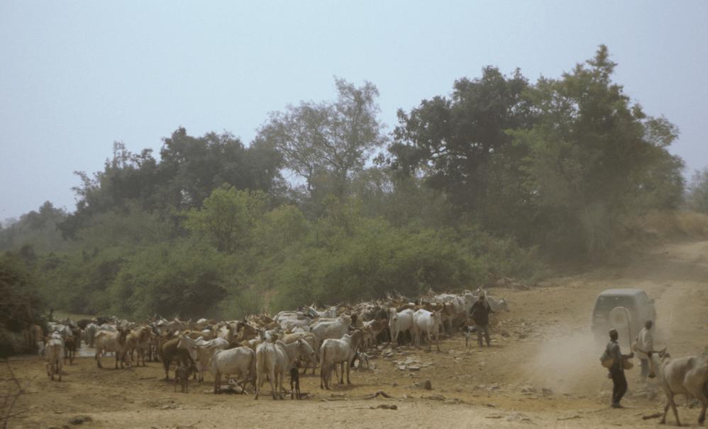Burkina Faso Travel Guide At Wikivoyage