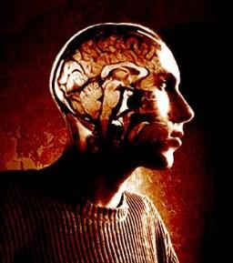 Inside my head cropped