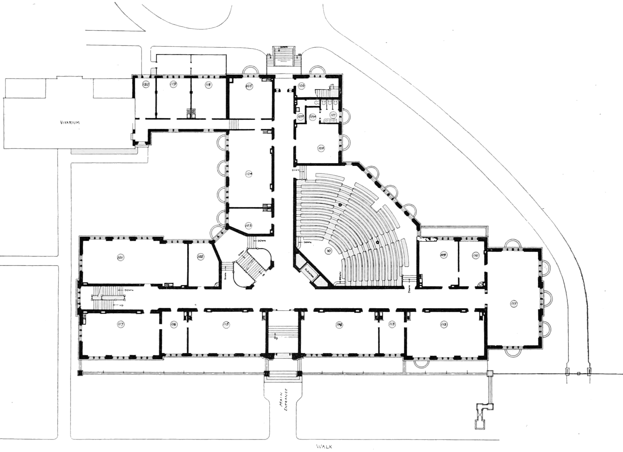File Psm V79 D623 First Floor Plan Of The Zoological Lab
