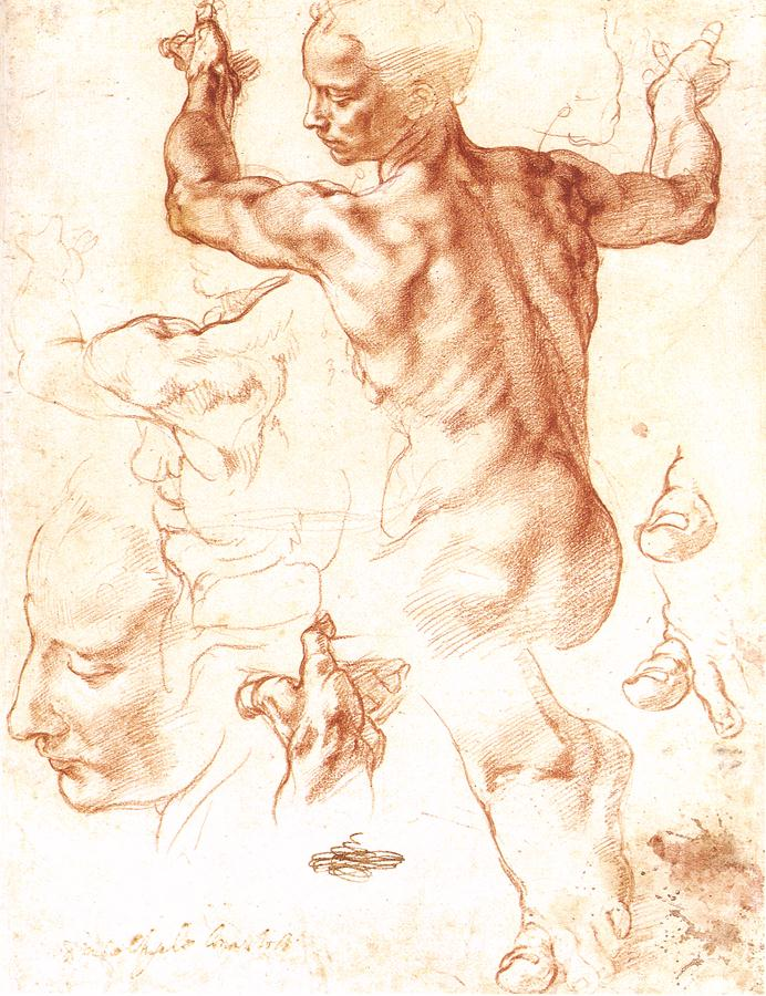 Study for the Libyan Sibyl (1511).